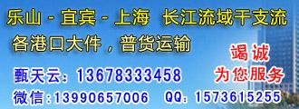芜湖华隆船务有限公司